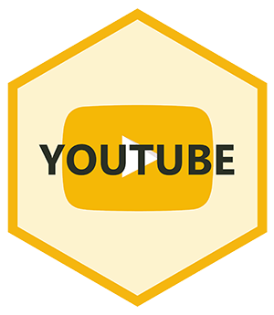 youtube_  smartcash
